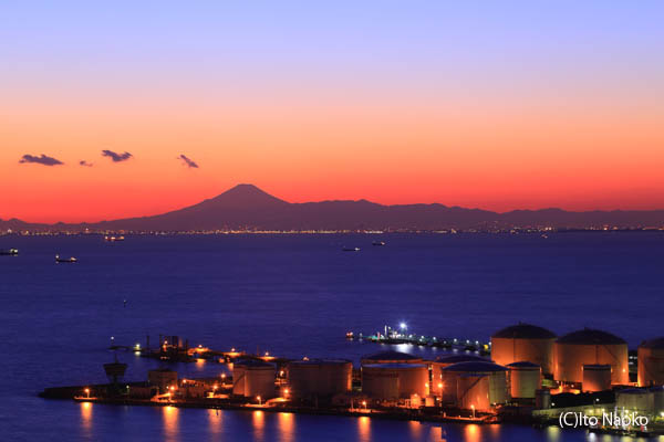 千葉ポートタワーの夜景スポット情報