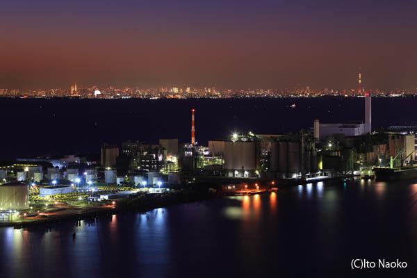 遠くに東京タワー 東京スカイツリー