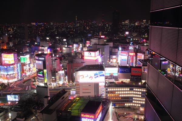 新宿エルタワー(ニコンプラザ)の夜景スポット情報