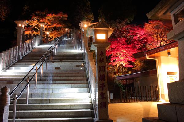 大山紅葉ライトアップ