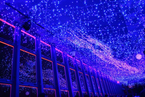 東京タワー 七夕☆イルミネーション