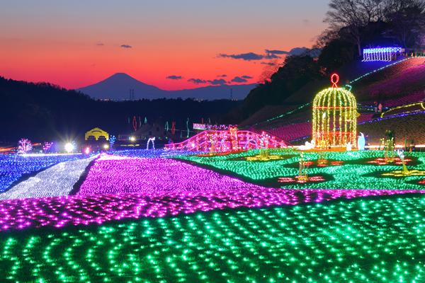 東京ドイツ村のイルミネーションスポット情報