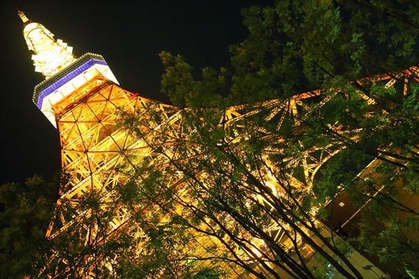 目の前の東京タワーに圧巻です☆