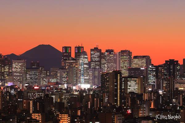 文京区シビックセンターの夜景スポット情報
