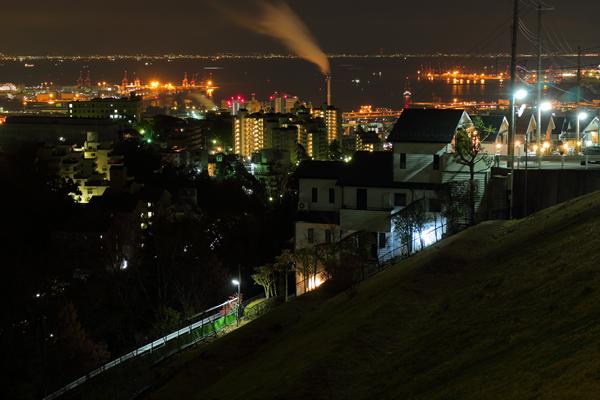 大月台(大月大橋)の夜景スポット情報