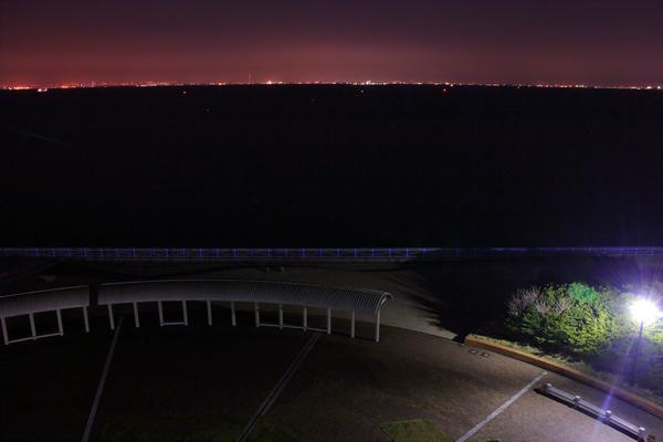 展望塔から東京湾を望む