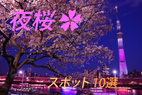 おススメ夜桜スポット10選★