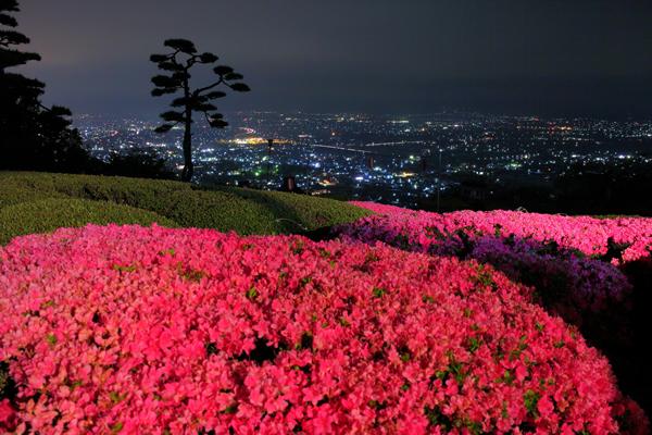 アルプス公園の夜景スポット情報みんなのYakei Memory☆人気のページコンテンツ一覧