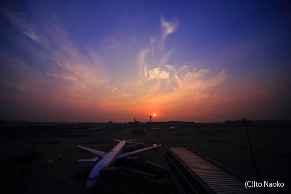 羽田空港国際ターミナル 日の出