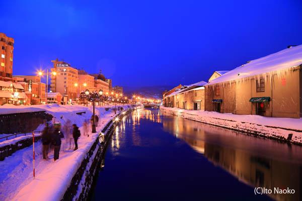 小樽運河の夜景スポット情報