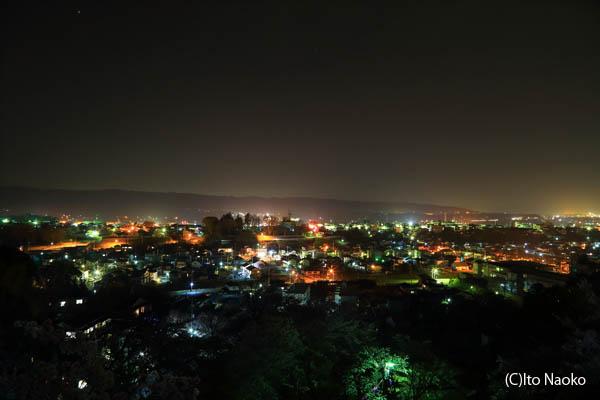 西山公園 展望デッキの夜景スポット情報