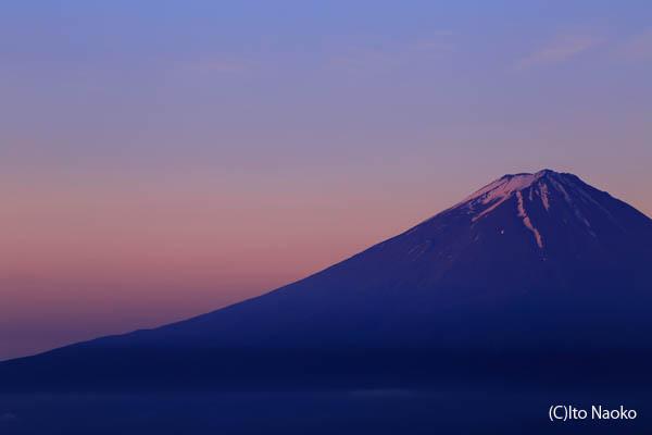 新道峠 紅富士