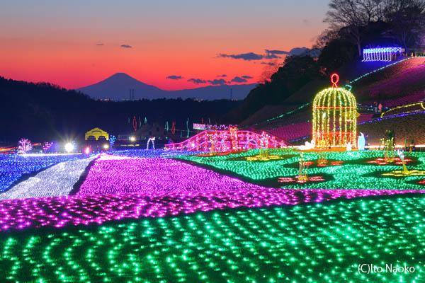 東京ドイツ村 イルミネーション 富士山