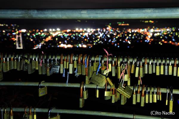 秩父ミューズパーク 旅立ちの丘の夜景スポット情報