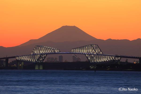 舞浜海岸の夜景スポット情報