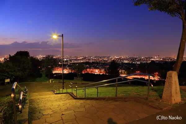 都立桜ヶ丘公園 ゆうひの丘の夜景スポット情報