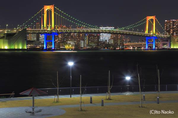 豊洲ぐるり公園の夜景スポット情報
