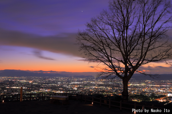 若草山の夜景スポット情報